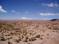 Andean Altiplano plateau Stock photo [1618104] Bolivia