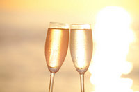 Toast in the sunset Stock photo [1619184] Cheers