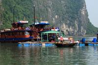 Halong Bay Stock photo [1620319] Halong