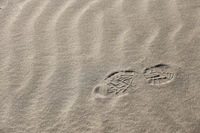 Wind ripples and footprints of sand Stock photo [1714204] Landscape
