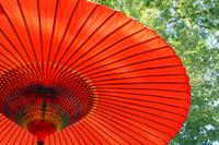 Japanese umbrella Stock photo [1717601] Japanese