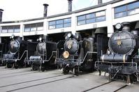 Plum alley steam locomotive pavilion Stock photo [1794012] Plum