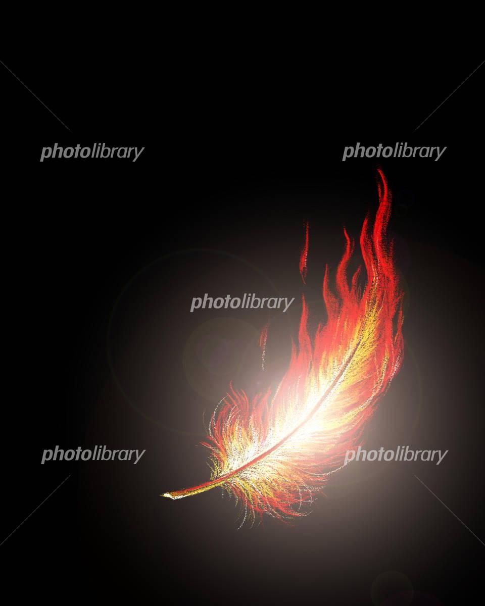 不死鳥の羽根 イラスト素材 1898335 フォトライブラリー Photolibrary