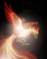 Phoenix [1898325] Phoenix