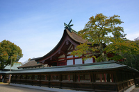 Munakata large shrine Stock photo [1908762] Fukuoka