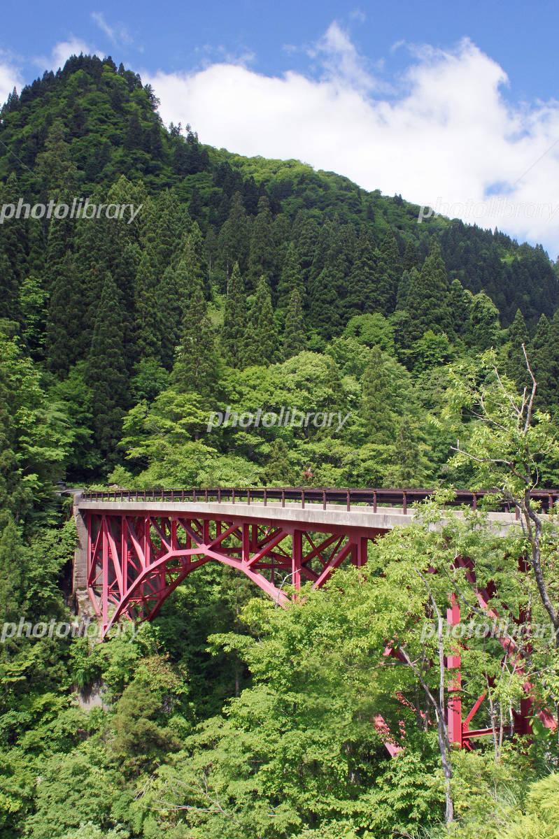 Red bridge of Tara Gorges Photo
