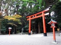 Torii of Kirishima Jingu Stock photo [2005912] Kagoshima