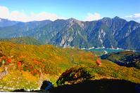 Autumn leaves of Alpine Route Stock photo [2007391] Toyama