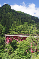 Red bridge of Tara Gorges Stock photo [2008603] Bridge