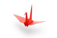 Origami crane Stock photo [2016242] Origami