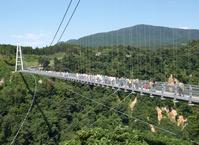 Kokonoe Yume-dai suspension bridge Stock photo [2016507] Suspension