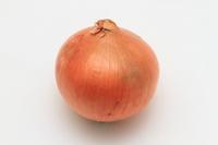 Onion Stock photo [2121221] Onion