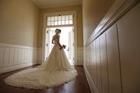 Wedding images Stock photo [2121341] Marriage