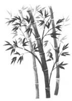 Sumi-e bamboo [2121670] Bamboo
