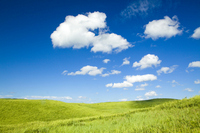 Hills and blue sky of grassland Stock photo [2121777] Prairie