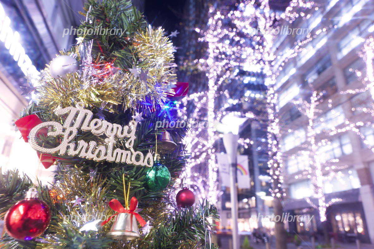 Marunouchi Naka-dori Christmas Photo