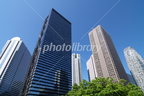 Skyscrapers of Shinjuku Photo