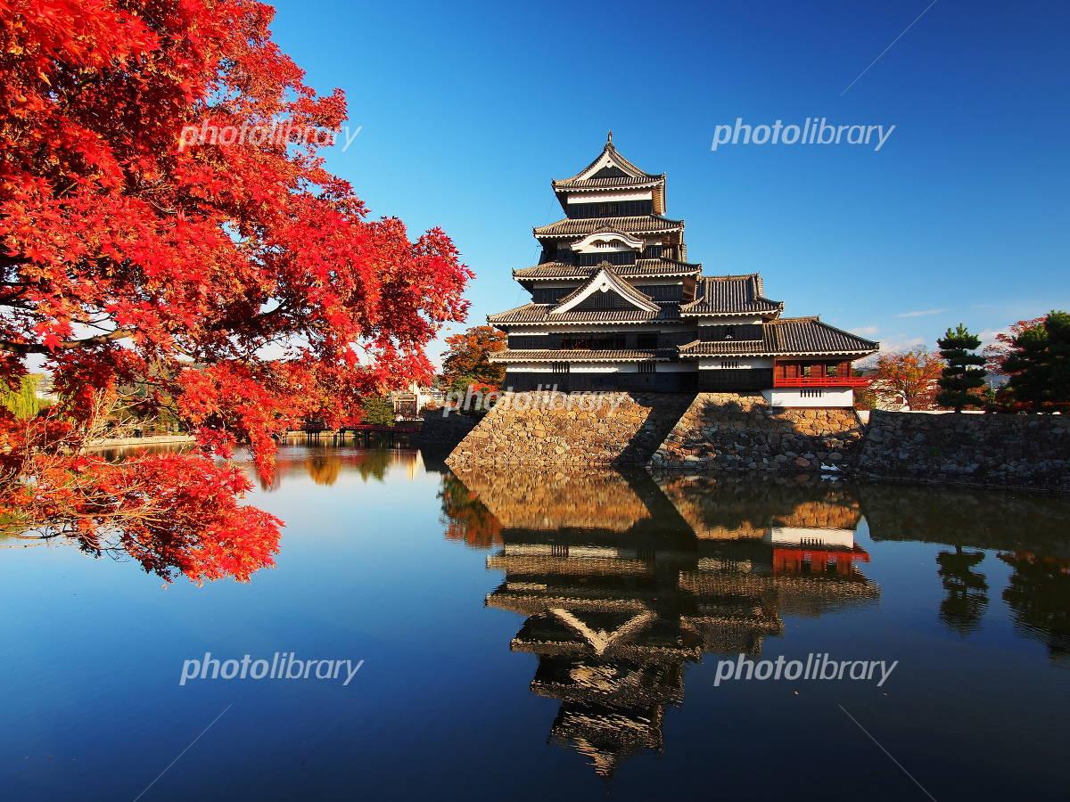 Autumn leaves of Matsumoto Castle Photo