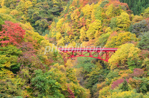Matsukawa autumn colors and high bridge of the valley Photo