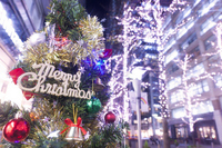 Marunouchi Naka-dori Christmas Stock photo [2214928] High