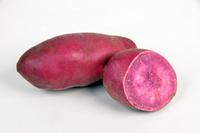 Purple sweet potato Stock photo [2218499] Purple