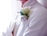 Groom wearing a tuxedo Stock photo [2222064] Boutonniere