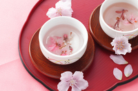 Sakura tea Stock photo [2227125] Cherry
