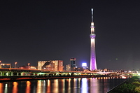 Sky Tree Stock photo [2231486] Night