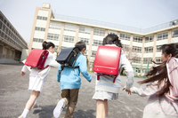 Rear View of four elementary school children to school Stock photo [2349014] Four