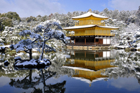 Kinkakuji of snow stock photo