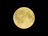 Golden full moon Stock photo [2356307] Moon