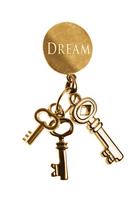 Key to success that dream come true Stock photo [2479003] Keys