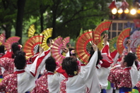 YOSAKOI Soran Festival Stock photo [2480288] YOSAKOI