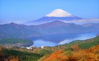Fuji from Daikan'yama stock photo