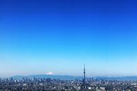 Tokyo and Mount Fuji Stock photo [2596595] Tokyo