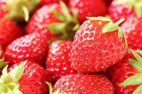 Strawberry Stock photo [2601710] Strawberry