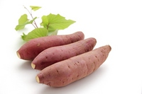 Sweet potato Stock photo [2608732] Sweet