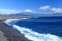 Fuji from Miho coast stock photo