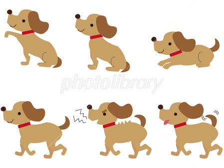 犬 ポーズ おすわり お手 イラスト素材 2773988 フォトライブ