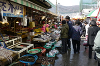 Jagalchi market Stock photo [2867610] Asia