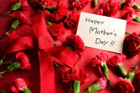 Message card red carnation background of Mother's Day Stock photo [3028497] Mother's