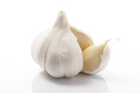 Garlic-up of a white background Stock photo [3028598] Garlic