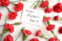 Message card red carnation background of Mother's Day Stock photo [3032399] Mother's