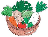 Basket of vegetables [3113321] Vegetables