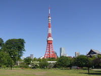 Tokyo Tower Stock photo [3119803] Blue