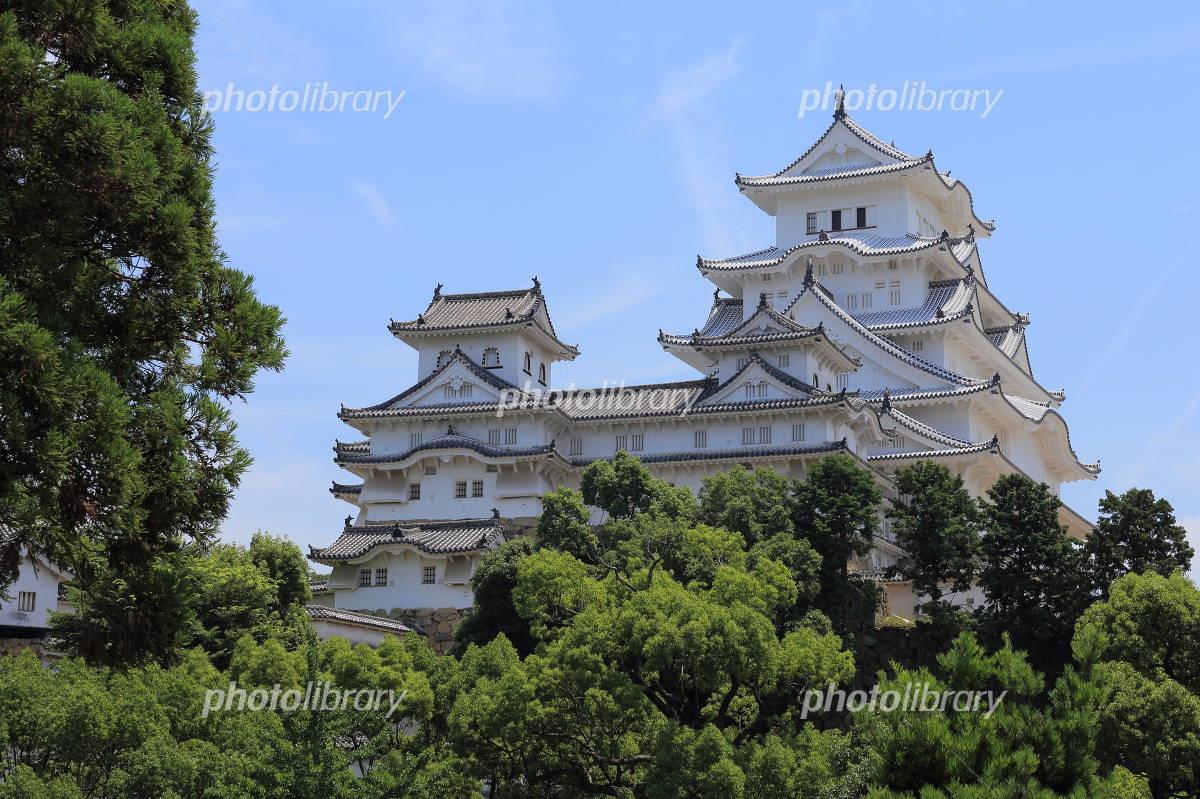 Shinsei Himeji Castle Photo