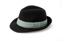 Fedora Stock photo [3211477] Fedora