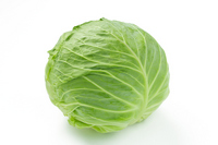 Cabbage Stock photo [3212779] Cabbage