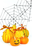 The Halloween-studded the pumpkin and spider web Stock photo [3214915] Halloween