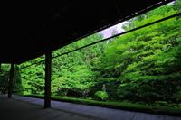 Myoshinji Katsura Spring Council Stock photo [3220060] Katsura